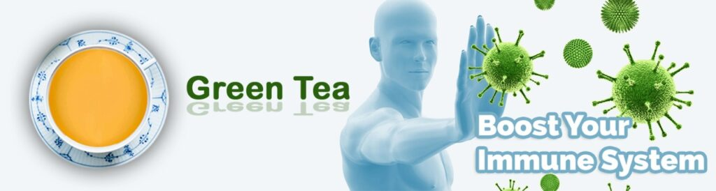 Best Green Tea | Boost your immune system